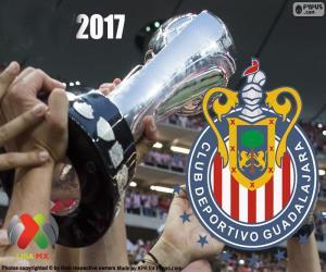 Puzle C.D. Guadalajara, campeão Clausura 2017