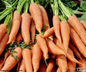 Puzle Cenouras