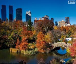 Puzle Central Park, Nova Iorque