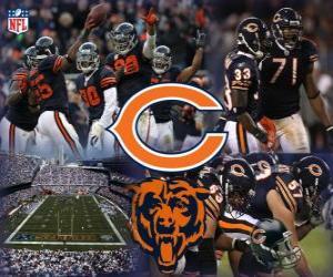 Puzle Chicago Bears