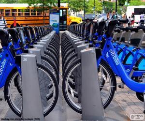Puzle Citi Bike, Nova Iorque