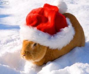 Puzle Coelho com um chapéu de Papai Noel