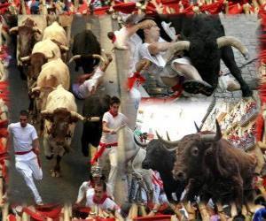 Puzle Corrida de touros ou encierro, Sanfermines. Pamplona, Navarra, Espanha. Festas de São Firmino de 6 a 14 de julho