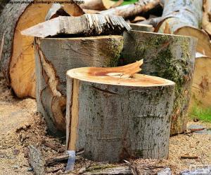 Puzle Cortar a árvore