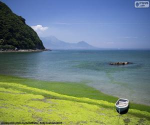 Puzle Costa Oeste de Kyushu, Japão