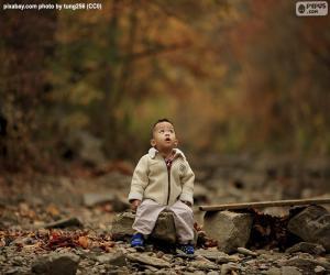 Puzle Criança na floresta