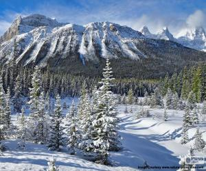 Puzle Crowfoot Mountain, Canadá