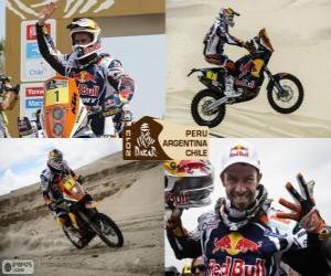 Puzle Cyril Despres, Dakar 2013