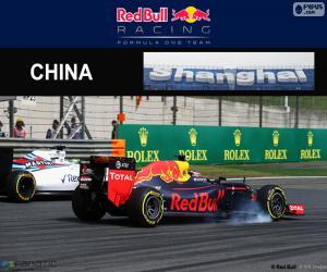 Puzle D. Kuyat Grande Prêmio China 2016