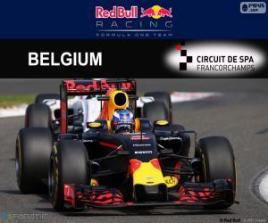 Puzle Daniel Ricciardo GP Bélgica 2016
