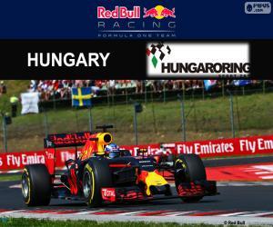 Puzle Daniel Ricciardo, GP Hungria 2016
