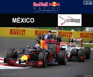 Puzle Daniel Ricciardo, GP México 2016