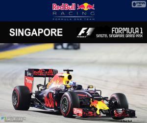 Puzle Daniel Ricciardo, GP Singapura 16