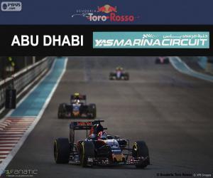 Puzle Daniil Kvyat, GP Abu Dhabi 2016