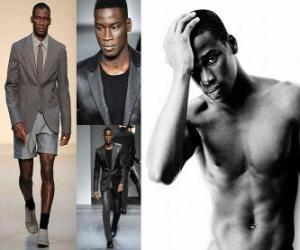 Puzle David Agbodji modelo francês