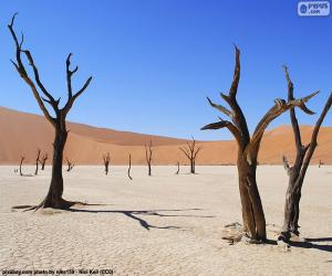 Puzle Deadvlei, Namíbia