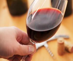 Puzle Degustação de vinhos