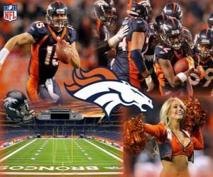 Puzle Denver Broncos