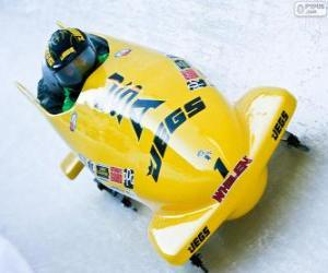 Puzle Descenso em bobsleigh ou bobsled