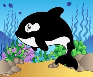 Puzle Desenho de uma Orca
