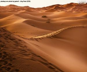 Puzle Deserto de Marrocos