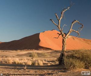Puzle Deserto do Namibe, Namíbia