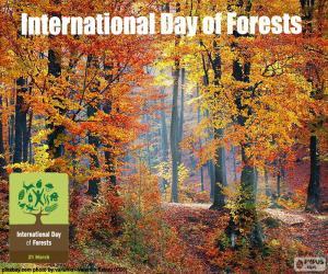 Puzle Dia internacional das florestas