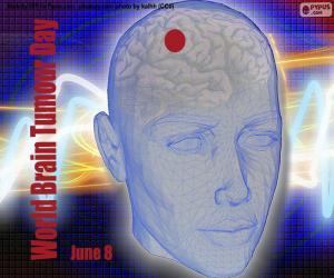 Puzle Dia Internacional de Tumores Cerebrais
