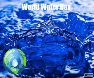 Puzle Dia Mundial da Água