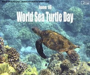 Puzle Dia Mundial das Tartarugas Marinhas