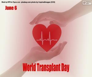 Puzle Dia Mundial dos Pacientes transplantados