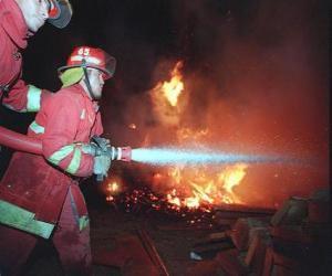Puzle Dois bombeiros em ação