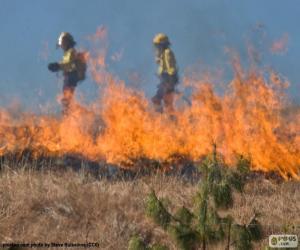 Puzle Dois bombeiros, fogo