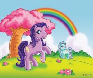 Puzle Dois Pony no campo