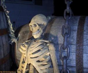 Puzle Esqueleto na noite de Halloween