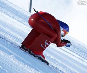 Puzle Esqui de velocidade