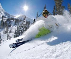 Puzle Esquiador fora faixa
