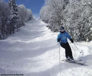 Puzle Esquiador