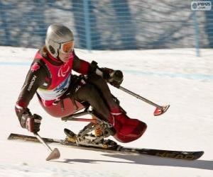Puzle Esquiadora Paralímpica na competição slalom