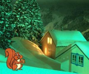 Puzle Esquilo comendo nozes pelo jantar de Natal