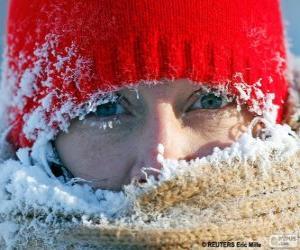 Puzle Está muito frio