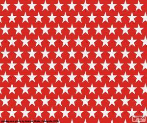 Puzle Estrelas brancas