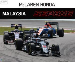 Puzle F. Alonso, GP da Malásia de 2016