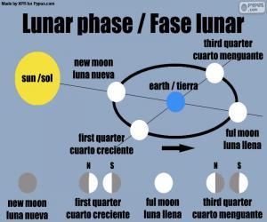 Puzle Fases da Lua