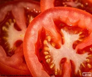 Puzle Fatias de tomate