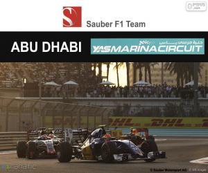Puzle Felipe Nasr, GP Abu Dhabi 2016