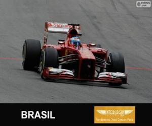 Puzle Fernando Alonso - Ferrari - Grande Prémio do Brasil 2013, 3º classificado