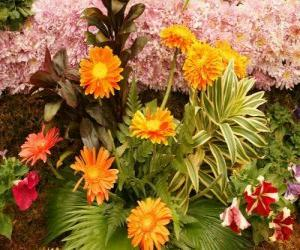 Puzle Flores variadas
