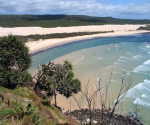 Puzle Fraser Island, a ilha de areia é de 122 quilômetros de extensão e é a maior do mundo no seu género. Austrália.