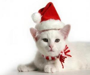 Puzle gato branco, com chapéus de Papai Noel